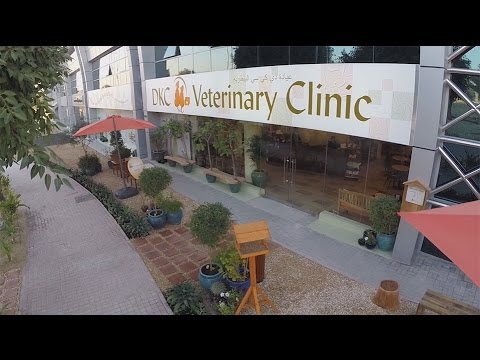 DKC Veterinary Clinic