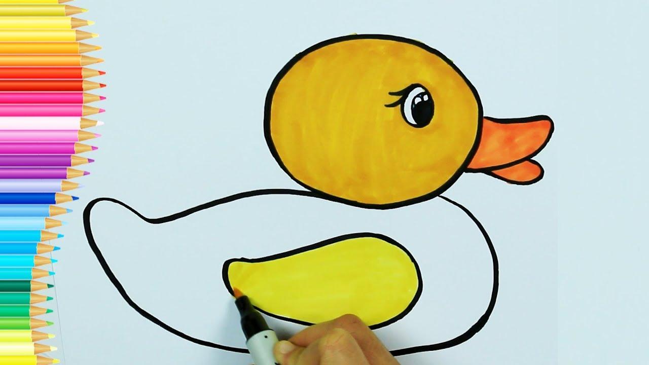 Ente Färbung Seite🌞| Wie zeichnet man Ente und Malvorlagen | Farben ...