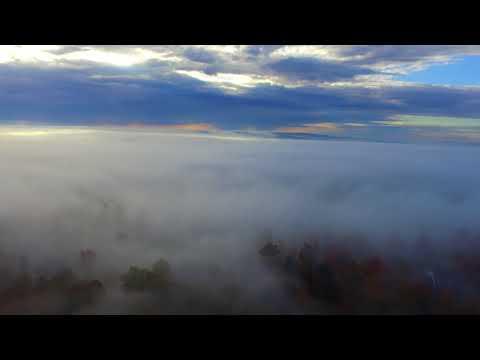 Foggy Morning in Springville