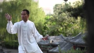 Best Taichi Video :: Beijing Milun Kungfu School