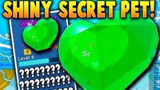 THE *SECRET* RAREST UPDATE PET! (Shiny Soul Heart!) - Roblox Bubble Gum Simulator