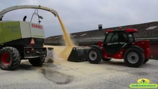 maisoogst 2016 mais dorsen en vermalen voor ccm door bouwhuis witteveen
