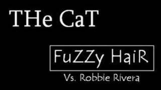 THe CaT - FuZZy HaiR
