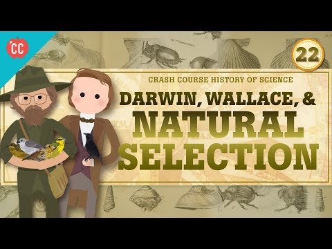 Darwin and Natural Selection: Crash Course History of Science #22