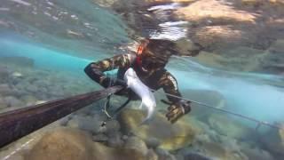 Levrek avları böl 1 #Spearfishing#