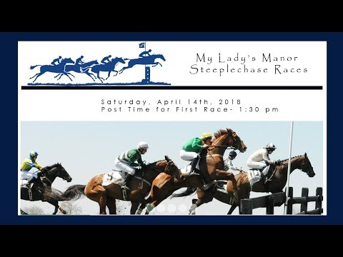 Live : My Lady's Manor Steeplechase Races