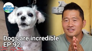 Dogs are incredible EP.92 | KBS WORLD TV 210915