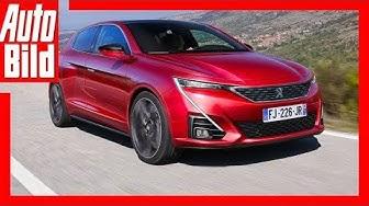 Zukunftsaussicht: Peugeot 308 (2020) Details / Erklärung
