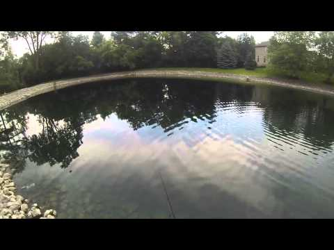Illinois Drop Shot Pond Bass Fishing With Underwater Bass Footage