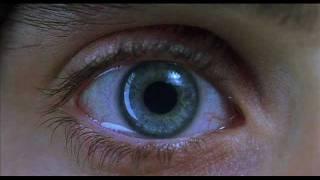 """Jimmy Steller reviews """"Requiem for a Dream"""""""