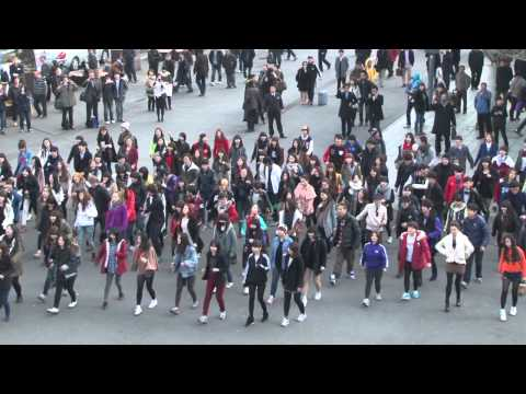 [GoGoDokdo!](K-Pop) Dokdo Flashmob - Dokdo is Korea Land / S