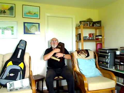 Autoharp Whiskey In The Jar Reload Including Lyrics And Chords