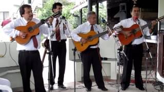 """LA DANZA DE LOS MIRLOS- CON """"ARMONÍAS DE MI TIERRA"""""""