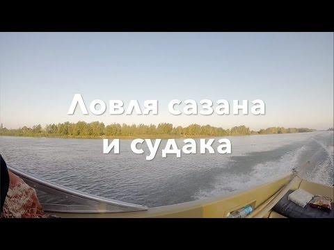 Рыбалка в Астрахани 2016: сазан, судак