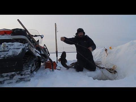 Рыбалка на Енисее 05.12.2019