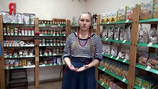 ЯБ2016 Магазин здравого питания «КУДЕСНИК»