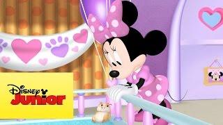 Minnie Toons - Adoção de Mascote