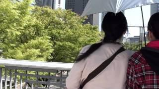 Nishi-Shinjuku Tokyo/Japan(Skyscraper District)