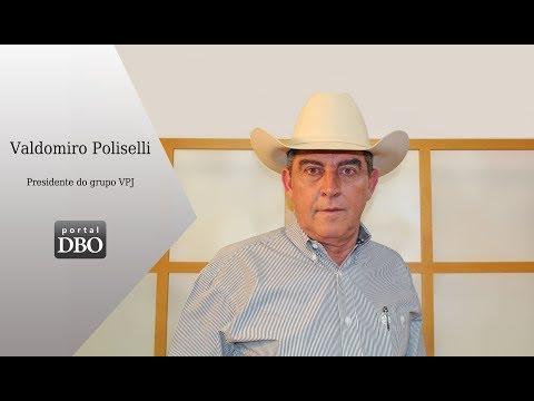 VPJ fará a primeira oferta de embriões Ultrablack Angus do Brasil