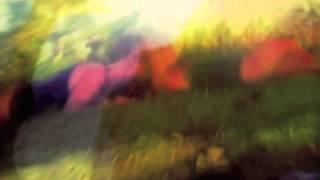 Cocorosie - Turn Me On (Further Remix)