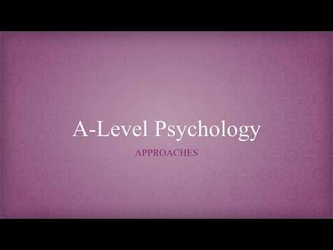 Psychology A-Level Revision - All Approaches overview