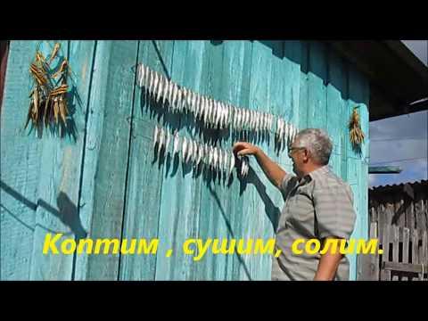 Нижний Суэтук -  р.  Суэтучка.  октябрь 2017 г.