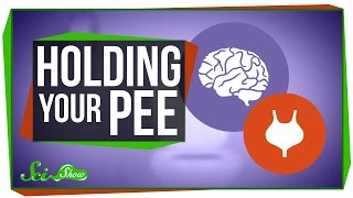 What Happens When You Hold Your Pee? thumbnail