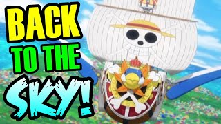 Will The Straw Hat's Go Back To The Sky? - One Piece Theory | Tekking101