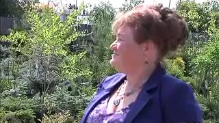 ▶ Вовремя красная гвоздика 9 07 14   YouTube 360p