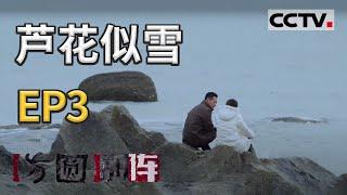 《方圆剧阵》芦花似雪 第二季 EP3 20210203   CCTV社会与法