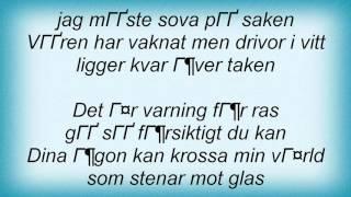 lars-winnerb-ck-varning-f-r-ras-lyrics