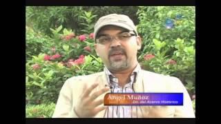 ¿Sabes qué es un relámpago catatumbo?