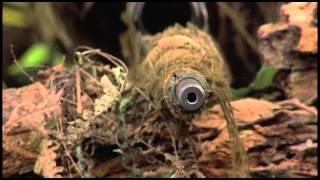 Sniper (1993) First Kill Scene