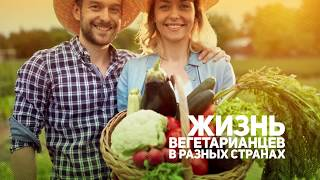 телеканал Первый Вегетарианский. Промо-ролик 2