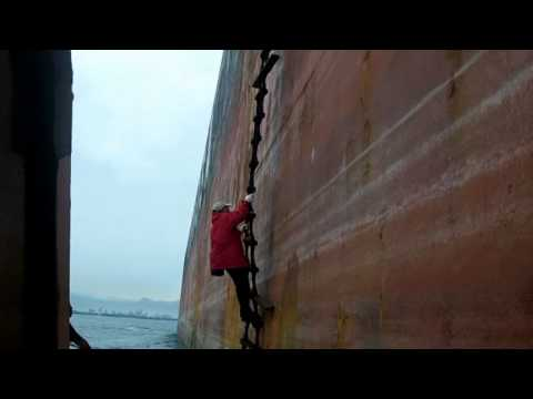 Pilot boarded huge ship after typhoon
