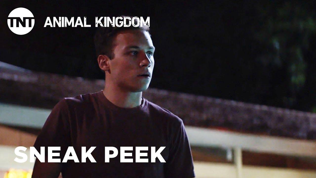 Animal Kingdom: The Hyenas - Season 3, Ep  13 [SNEAK PEEK] | TNT