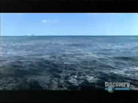 tsunami 2006 - discovery channel.mp4