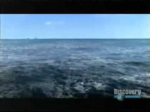 tsunami 2006 discovery youtube. Black Bedroom Furniture Sets. Home Design Ideas