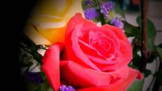 """(HD 720p) Jim Reeves Sings """"Moonlight and Roses"""""""