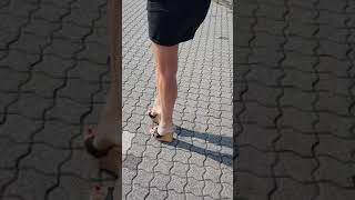 High heels wedge mules outdoor