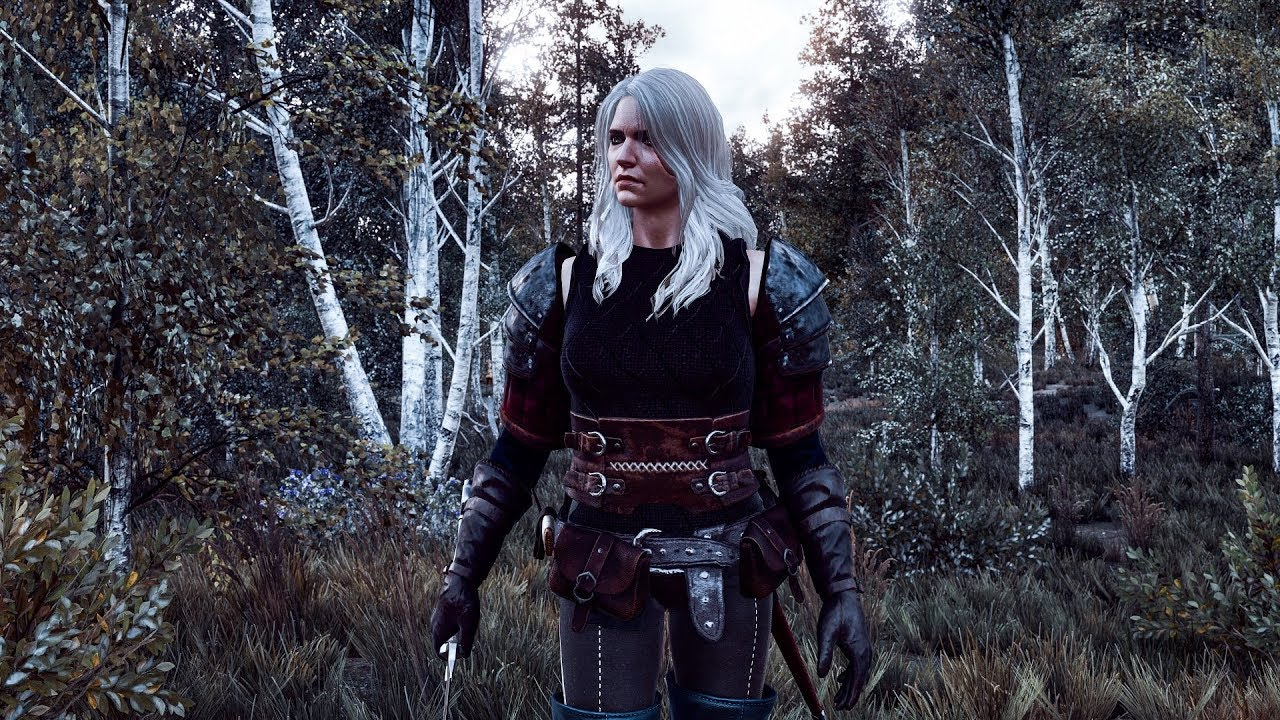 The Witcher 3 Ciri Armor Outfit (Both Player and NPC)