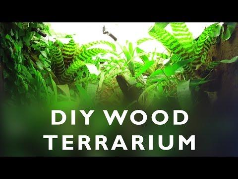 DIY wood terrarium for dart frogs