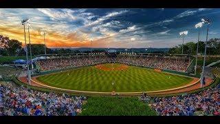 Little League World Series Live