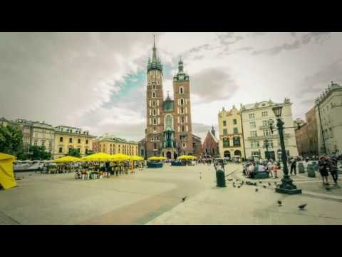 Study In Poland with Scholarship | warsaw wroclaw universities | videsh consultz