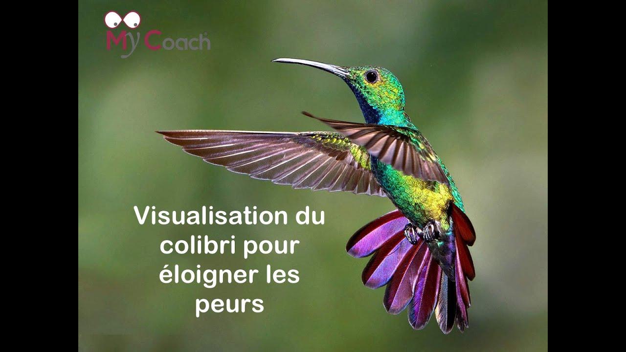 Visualisation du colibri pour éloigner les peurs Méthode JIA©