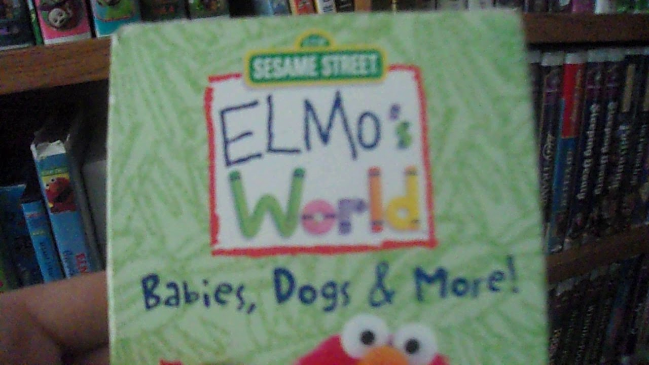 Sesame Street: Big Bird's Story Time: VHS Review by CM Vogt