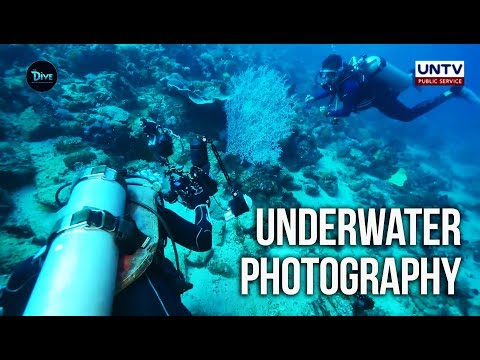 UNTV: The Dive | Puerto Galera Diving Adventure With Underwater Photographer Wayne Jones
