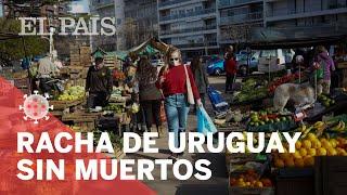 CORONAVIRUS | Uruguay dejó de REGISTRAR fallecimientos hace CUATRO días
