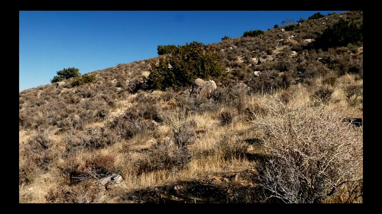 360 View of 5 Acres Yucca Valley Property in San Bernardino County, CA