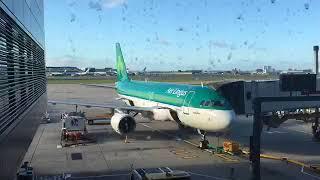 【世界のオアシス】アイルランドの航空会社エアリンガス搭乗!あこがれのアイリッシュグリーンの機体に遂に乗ってきました!